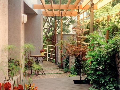 организация места отдыха на даче комнатные цветы на улице
