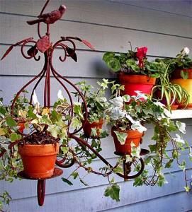 кашпо на даче комнатные цветы на улице