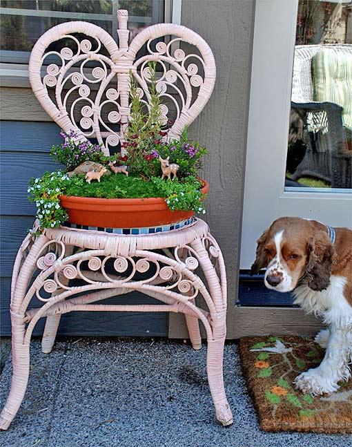 комнатные цветы оригинальная поставка стул