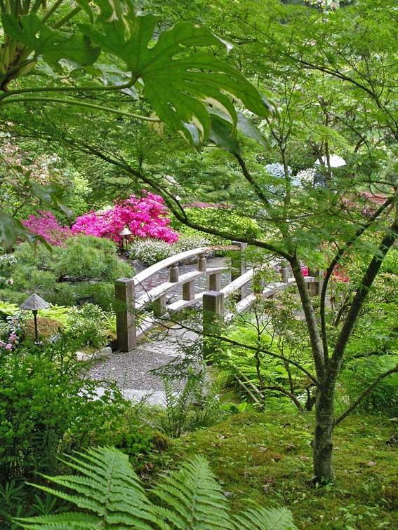 Японский сад - деревянный мостик через ручей