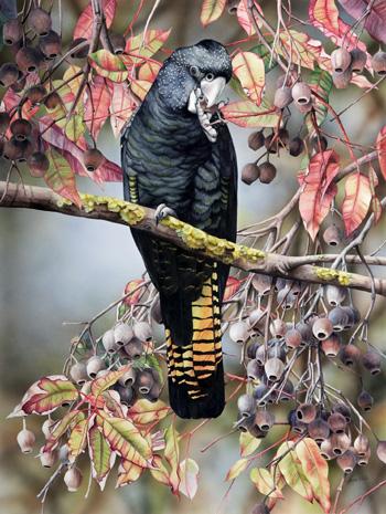 птица картина