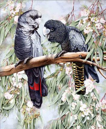 птицы картина