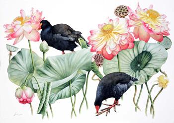 птицы и лотосы