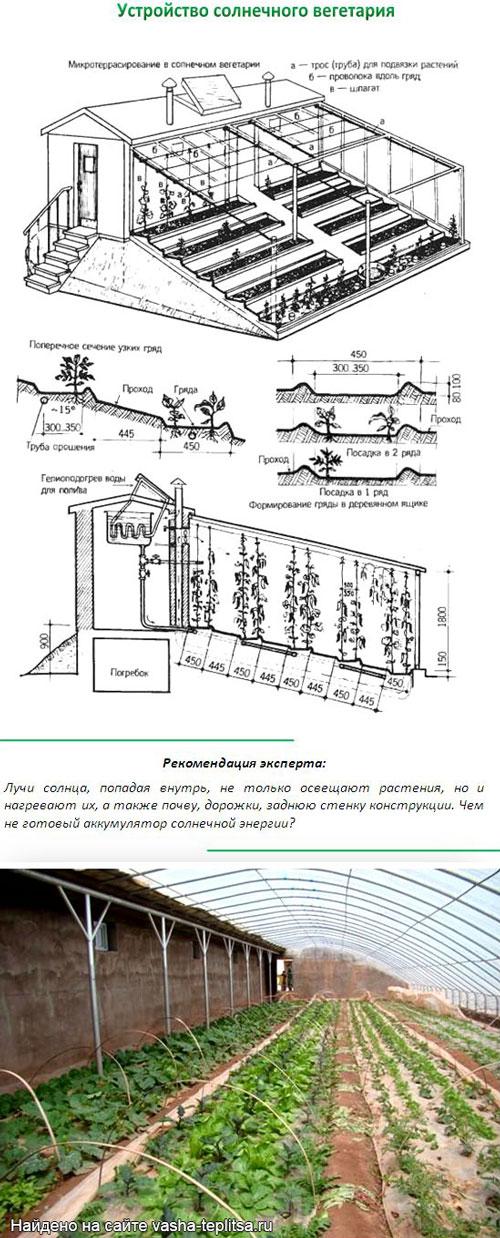 Схема чертеж теплицы - солнечного вегетария