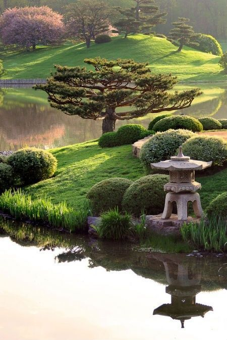 Красивый ландшафтный  дизайн в японском стиле
