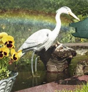 Фигурка цапли в пруду на даче