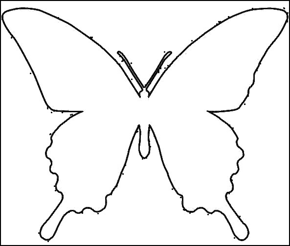 Трафарет бабочки для декора своими руками фото 681