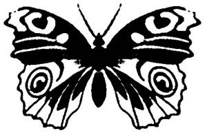 трафарет бабочки бесплатно