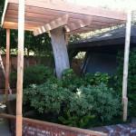 Дом на дереве 3