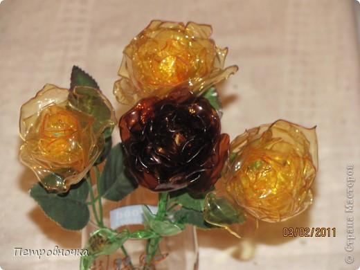 Мастер класс: цветы розы из пластиковых бутылок (1)