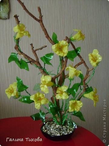 Цветы из яичных ячеек 6