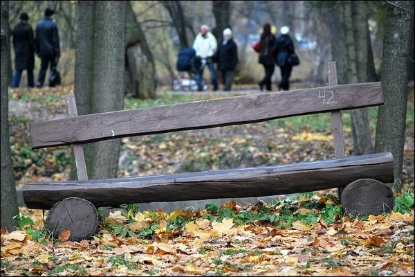 Скамейка из бревенчатых плашек